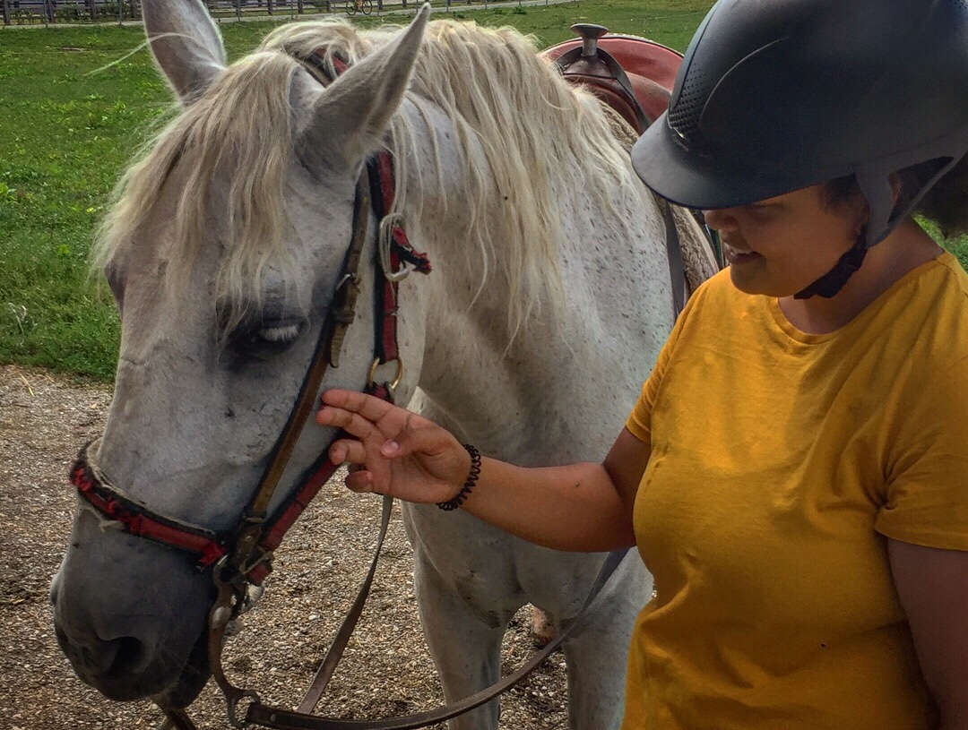 Jemma in the yellow top stroking Tim the white horse before we begin horseriding around Bled in Slovenia
